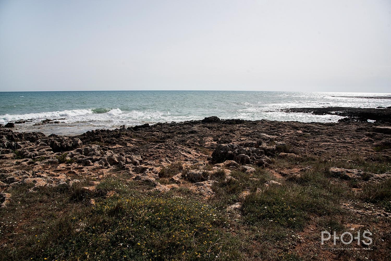 Apulia1365