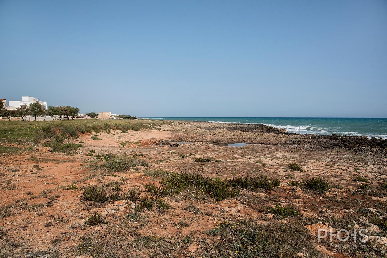 Apulia1376